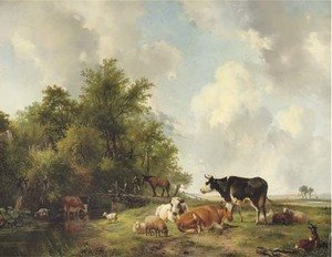 Cattle on the edge of a forest in an extensive sunlit landscape
