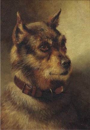 Reproduction oil paintings - Herbert William Weekes - A border terrier