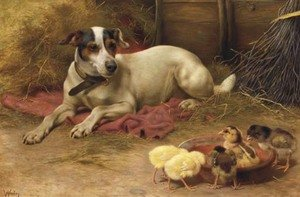 Reproduction oil paintings - Herbert William Weekes - Guarding the chicks