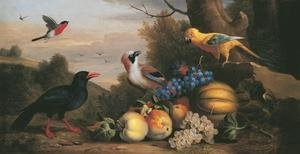 A Bullfinch, a Chough, a Jay and a Sun Conure with quinces, grapes and melons in a landscape