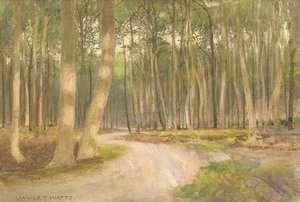 Reproduction oil paintings - James Thomas Watts - An evening glow in the woods