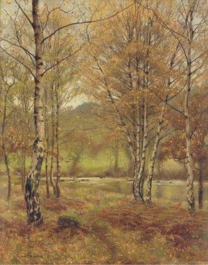 Reproduction oil paintings - James Thomas Watts - Bettwys-y-Coed, Wales