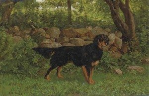 A Gordon Setter by a wood