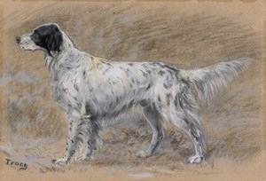 Reproduction oil paintings - John Martin Tracy - A Setter