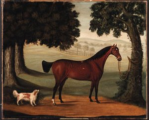 John Burell Read reproductions - A Bay Horse and Spaniel in a Landscape