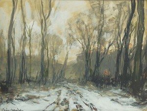 A forest path in winter