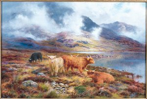 Highland Cattle by a Loch 2