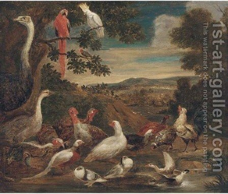 An ostrich, parrots, turkeys, woodcock, a pheasant and other birds in a landscape by (after) Melchior De Hondecoeter - Reproduction Oil Painting