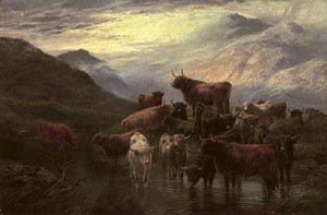 Cattle watering in a highland landscape