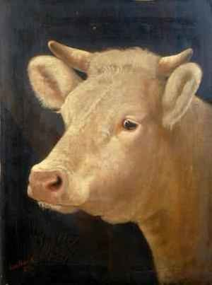 Lou Burk reproductions - Head of a Cow