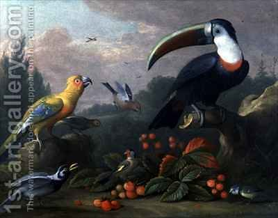 Toucan with Other Birds by (after) Boggi, Giovanni - Reproduction Oil Painting