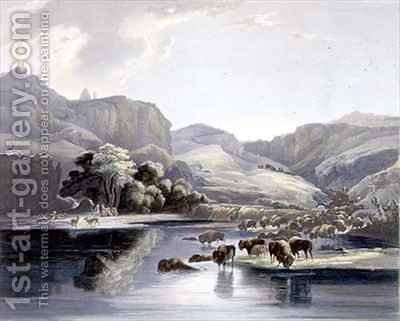 Herds of Bison and Elk on the Upper Missouri by (after) Bodmer, Karl - Reproduction Oil Painting