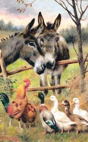 Reproduction oil paintings - Herbert William Weekes - Donkey And Ducks
