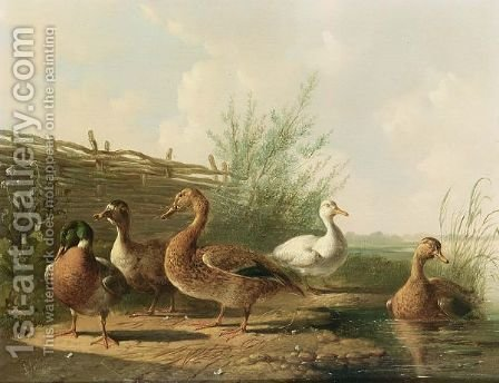 Ducks In A Landscape by Albertus Verhoesen - Reproduction Oil Painting