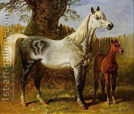 A Grey Mare And Foal by Hugh Newell - Reproduction Oil Painting