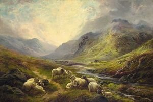 Sheep Resting In A Highland Landscape