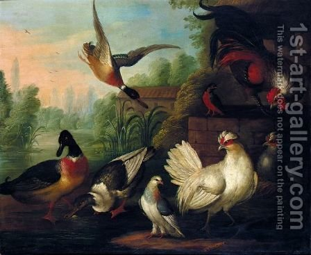 A Still Life With Chickens, Ducks, A Kingfisher And A Pigeon In A River Landscape by (after) Pieter Casteels III - Reproduction Oil Painting