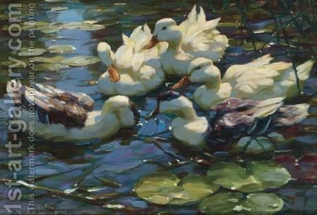 Five Ducks In A Pond by Alexander Max Koester - Reproduction Oil Painting
