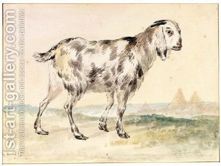 An Egyptian Goat by Aert Schouman - Reproduction Oil Painting