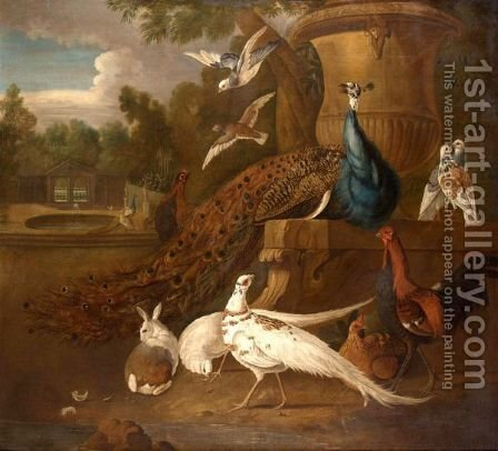 Peacocks, White Pheasants, Doves, A Hen, A Cockerel, A Rabbit Together In A Parkland Landscape by (after) Pieter Casteels III - Reproduction Oil Painting