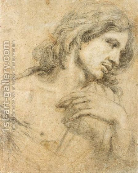 Study Of A Youth, Head And Shoulders by (after) Dyck, Sir Anthony van - Reproduction Oil Painting