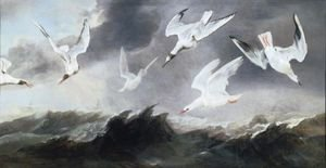A Flock Of Terns And Gulls Above Stormy Seas