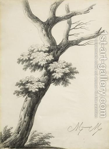 Study Of A Tree by Alphonse Nicolas Michel Mandevare - Reproduction Oil Painting
