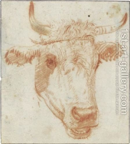 Study Of The Head Of A Cow by (after) Karel Dujardin - Reproduction Oil Painting
