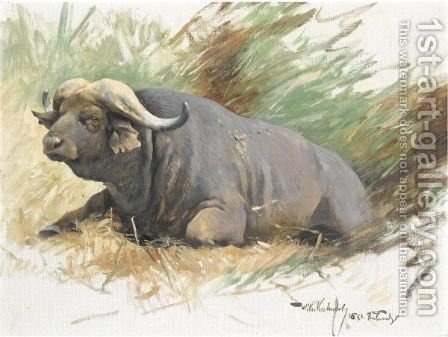 Wilhelm Kuhnert: Study Of A Buffalo - reproduction oil painting