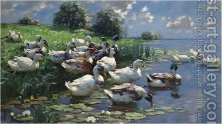 Ducks On A Lake Shore by Alexander Max Koester - Reproduction Oil Painting