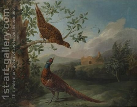 A Pair Of Pheasants In An Extensive Landscape by (after) Stephen Elmer - Reproduction Oil Painting