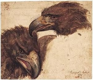 Two Studies Of The Head Of An Eagle