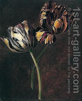 A study of variegated tulips by (after) Jan Frans Van Dael - Reproduction Oil Painting