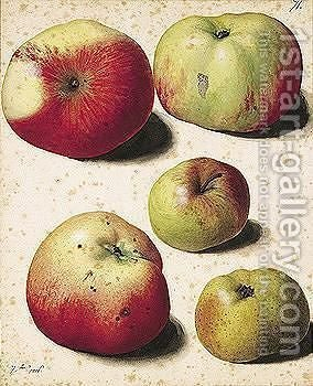 Five Apples by (after) Pierre-Joseph Redoute - Reproduction Oil Painting