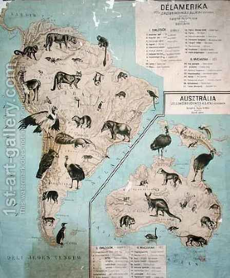 Map of animals in South America and Australia