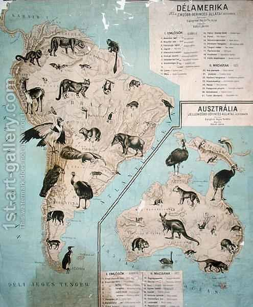 Huge version of Map of animals in South America and Australia
