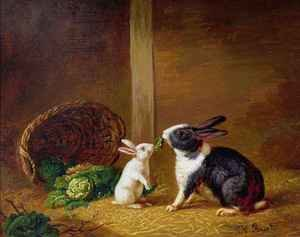 Realism painting reproductions: Two Rabbits