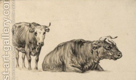 Study Of Two Cows 2 by Aelbert Cuyp - Reproduction Oil Painting
