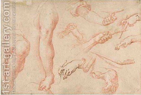 Seven studies of hands and two studies of a right leg by Abraham Bloemaert - Reproduction Oil Painting