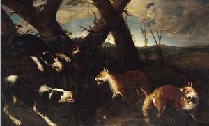 Hounds attacking foxes
