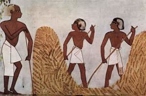 Famous paintings of Landscapes: Grave chamber of Menna, scribe of the king's farm, scene working on the threshing floor