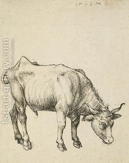 Young Steer by Albrecht Durer - Reproduction Oil Painting