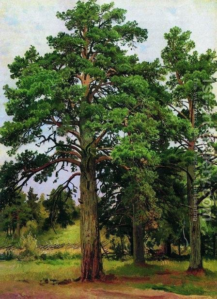Pine without the sun. Mary-Howe by Ivan Shishkin - Reproduction Oil Painting