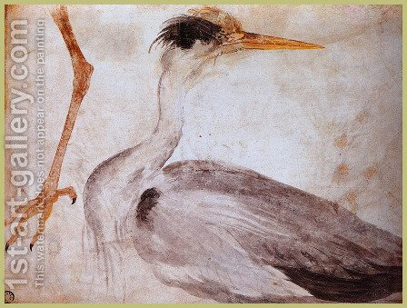 Garza by Albrecht Durer - Reproduction Oil Painting
