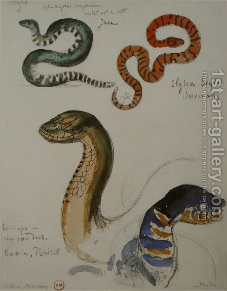 Four studies of snakes by Gustave Moreau - Reproduction Oil Painting