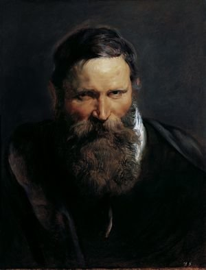 Reproduction oil paintings - Rubens - Head of a bearded man 2