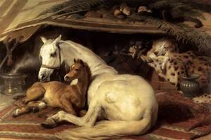 Famous paintings of Domestic Animals: The Arab Tent  1866