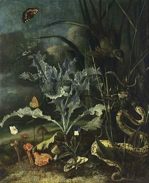 Famous paintings of Butterflies: A Forest Floor Still-Life 1666