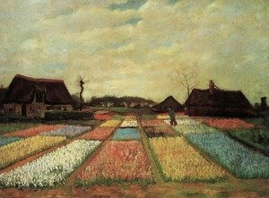Reproduction oil paintings - Vincent Van Gogh - Bulb Fields