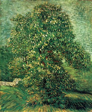Reproduction oil paintings - Vincent Van Gogh - Chestnut Tree In Blossom II